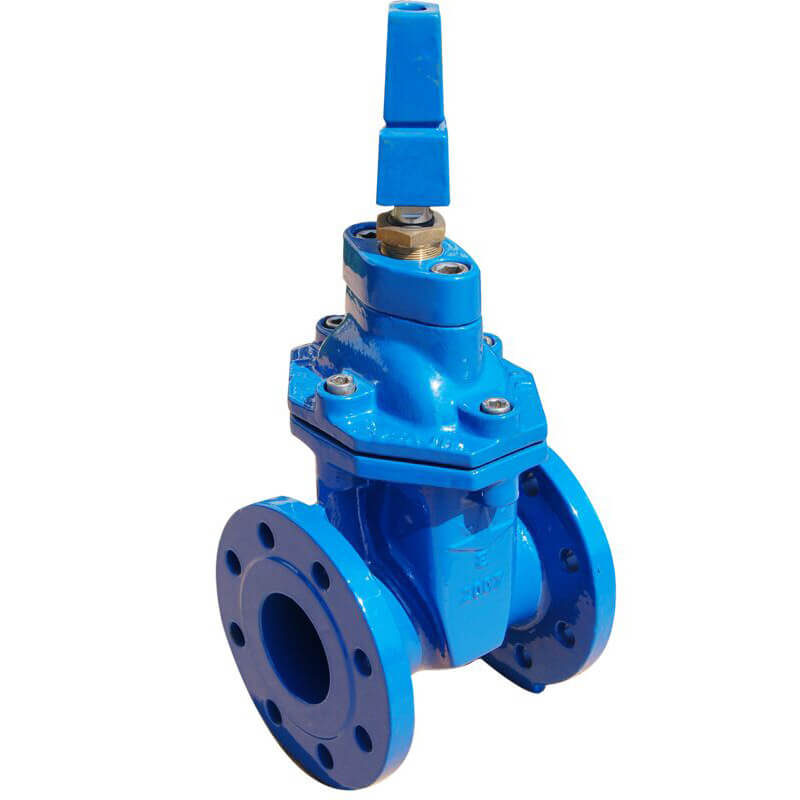 Resilient Seated Gate Valve with cap