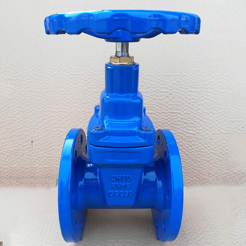 Flanged Gate Valve BS5163